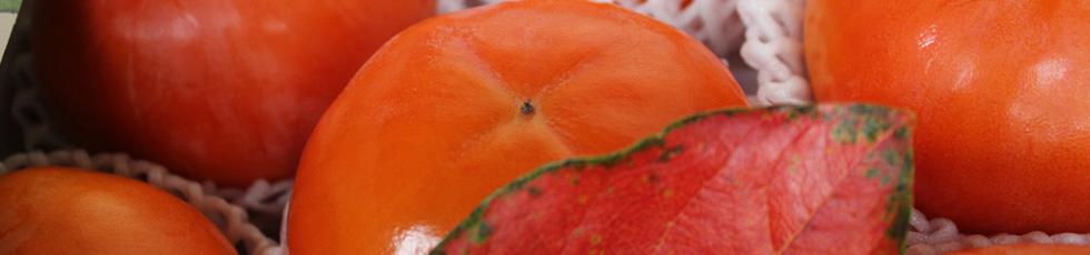 つるし柿セット
